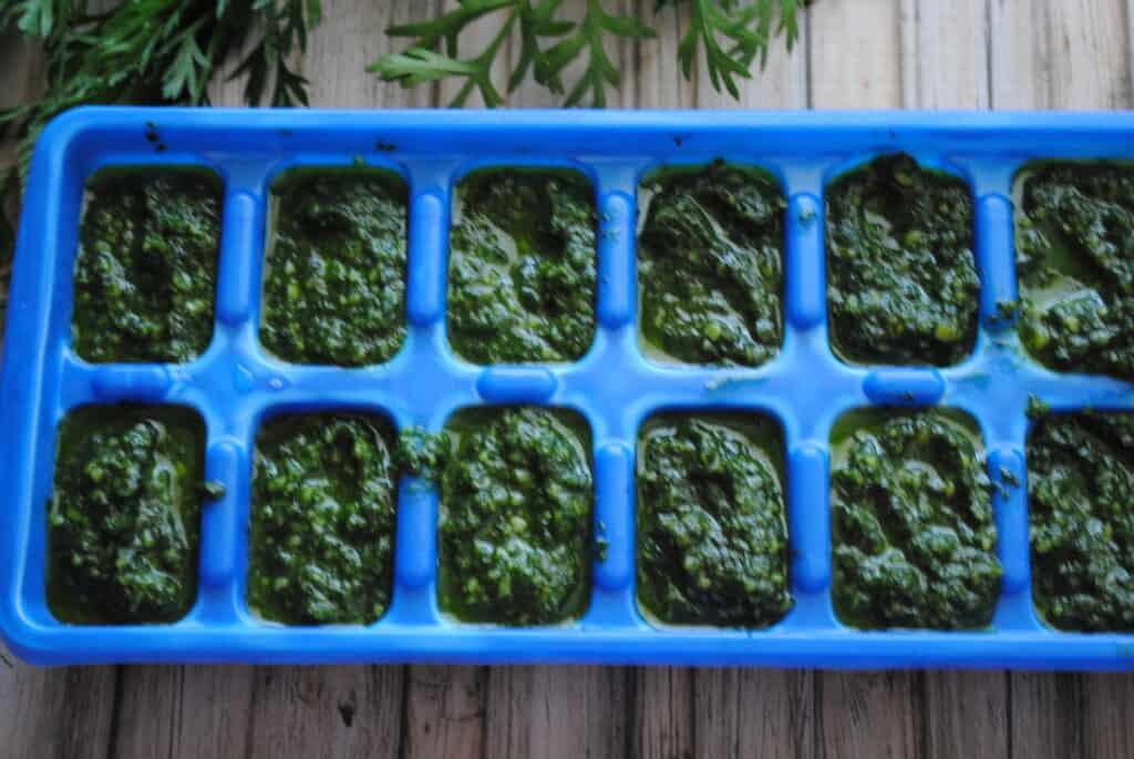frozen pesto cubes