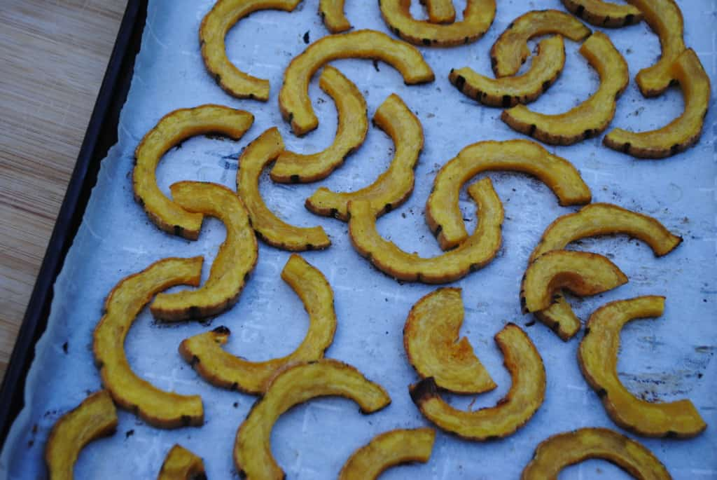 Roasted delicata squash is a delicious fall side dish.