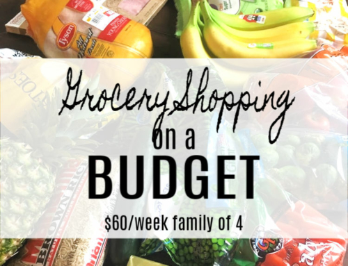 Grocery Shopping on a Budget ($60 budget challenge week 5)